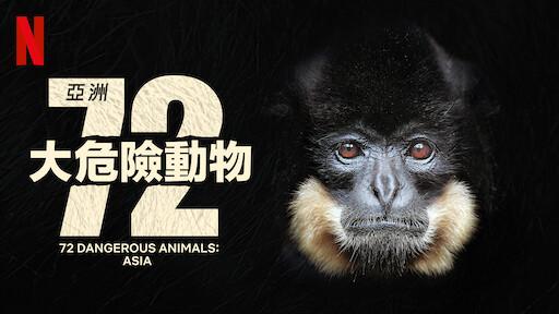 亞洲 72 大危險動物